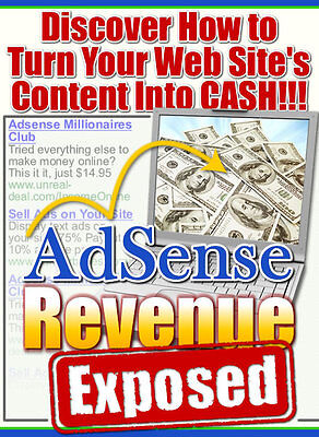 Discover How To Turn Your Website's Content Into Cash With ADSENSE Revenue (CD)