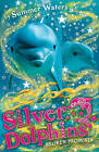 Broken Promises (Silver Dolphins, Book 5) by Summer Waters (Paperback, 2009)