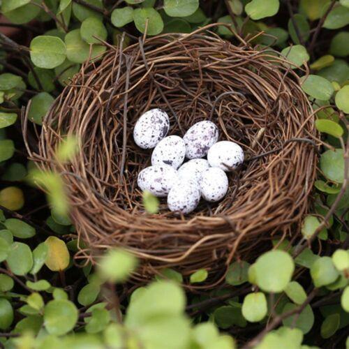 Bird Nest Bird Cage Wedding Photography Props Christmas Halloween Decorations