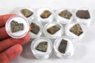 NWA specimen  Meteorite specimen in display box S.V.F Astronomy gift