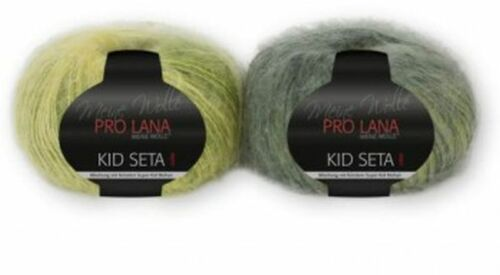 seda todos los colores 31,80 €//100g pro lana Kid seta color 25g mohair
