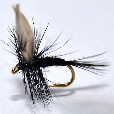 BLACK GNAT Dry fishing flies size & quantity options available by Dragonflies
