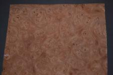 Elm Burl Raw Wood Veneer Sheet 95 X 145 Inches 142nd 8628 16