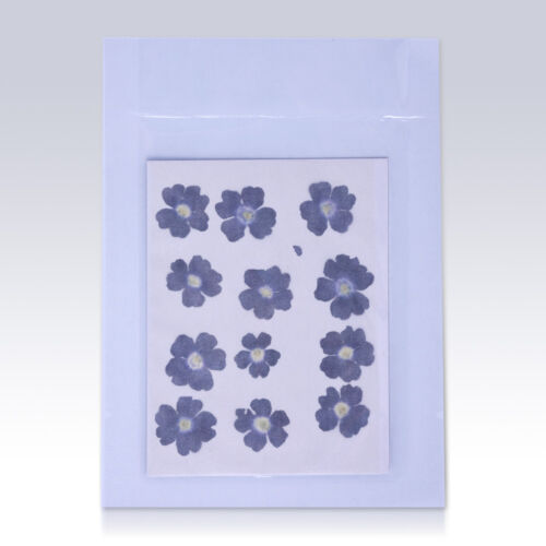 12pcs Dried Real Pressed Flower Stickers dried flowers for iPhone art,for craft