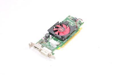 AMD KCC-REM-ATI-102-C26405 HD6450 1GB Low Profile DVI /& Display Port PCI-E Video