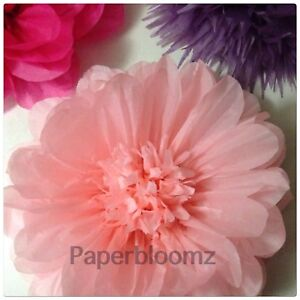 Details About Paperbloomz Large Paper Flower Pink Tissue Paper Flowers Wall Decorations