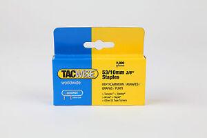 10mm Tacwise Graffette Tipo 53 forniture per tappezzeria  </span>