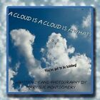 A Cloud is a Cloud is a What: You've Got To Be Kidding by Mary Sue Montgomery (Paperback, 2010)