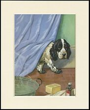 COCKER SPANIEL PUPPY AT BATHTIME LOVELY DOG PRINT MOUNTED READY TO FRAME
