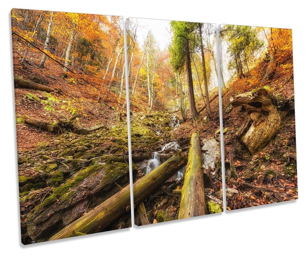 Woodland Forest Landscape Picture TREBLE CANVAS WALL ART Print