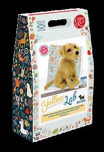 Les petits malins Kit Company dinky Chiens Jaune Labrador aiguille feutrage Kit