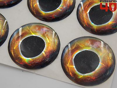 Lure Making 4D Self Adhesive holo Eyes jigheads/_Squid Gold Brown/_4D Lure Eyes