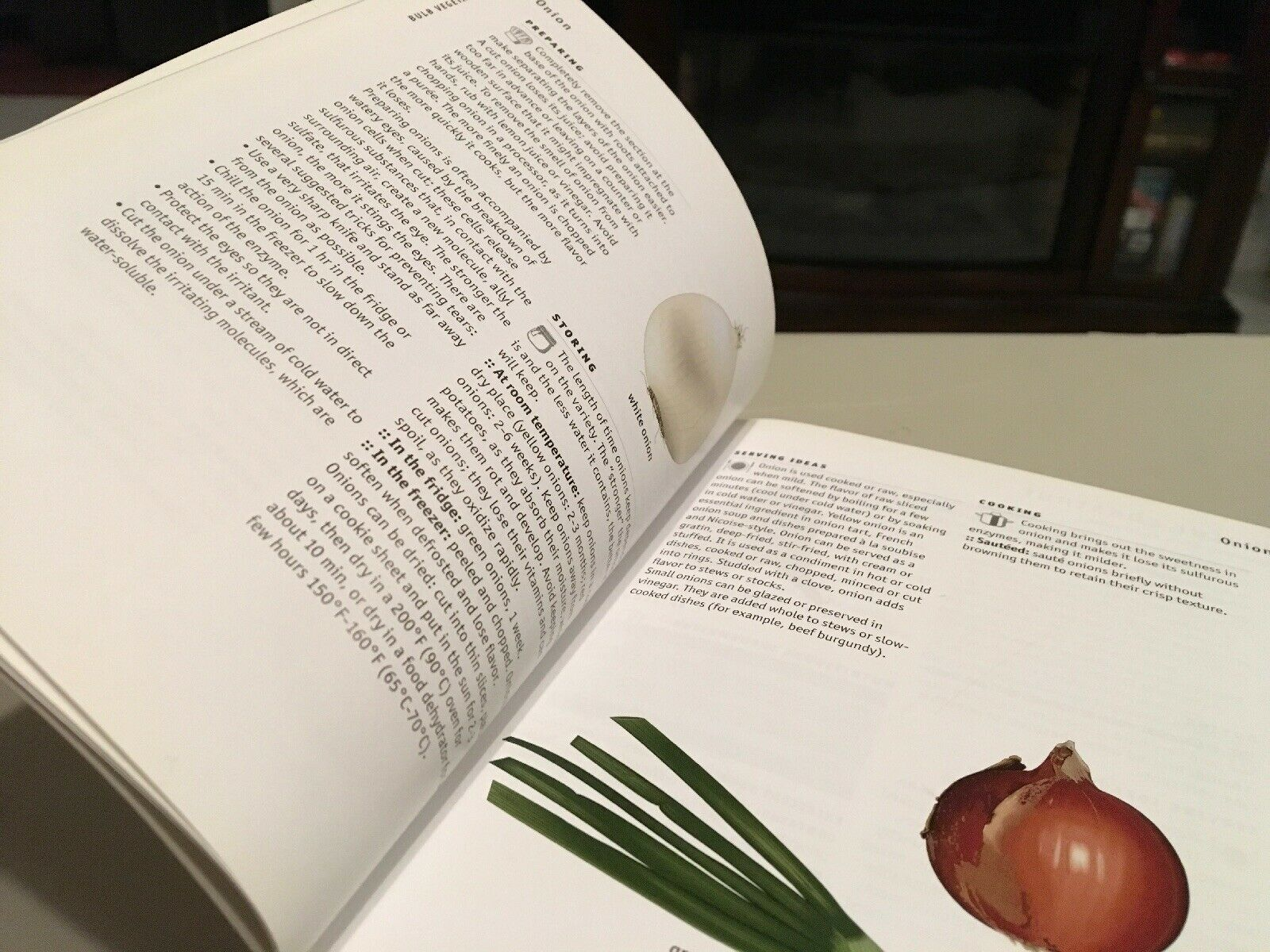 The Visual Food Lover's Guide : Includes Essential Information on How to  Buy, Prepare and Store over 1,000 Types of Food by QA International, QA