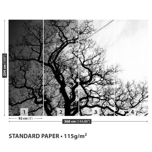 Papier-Fototapete Fototapeten Tapete aus Papier Poster Foto Baum