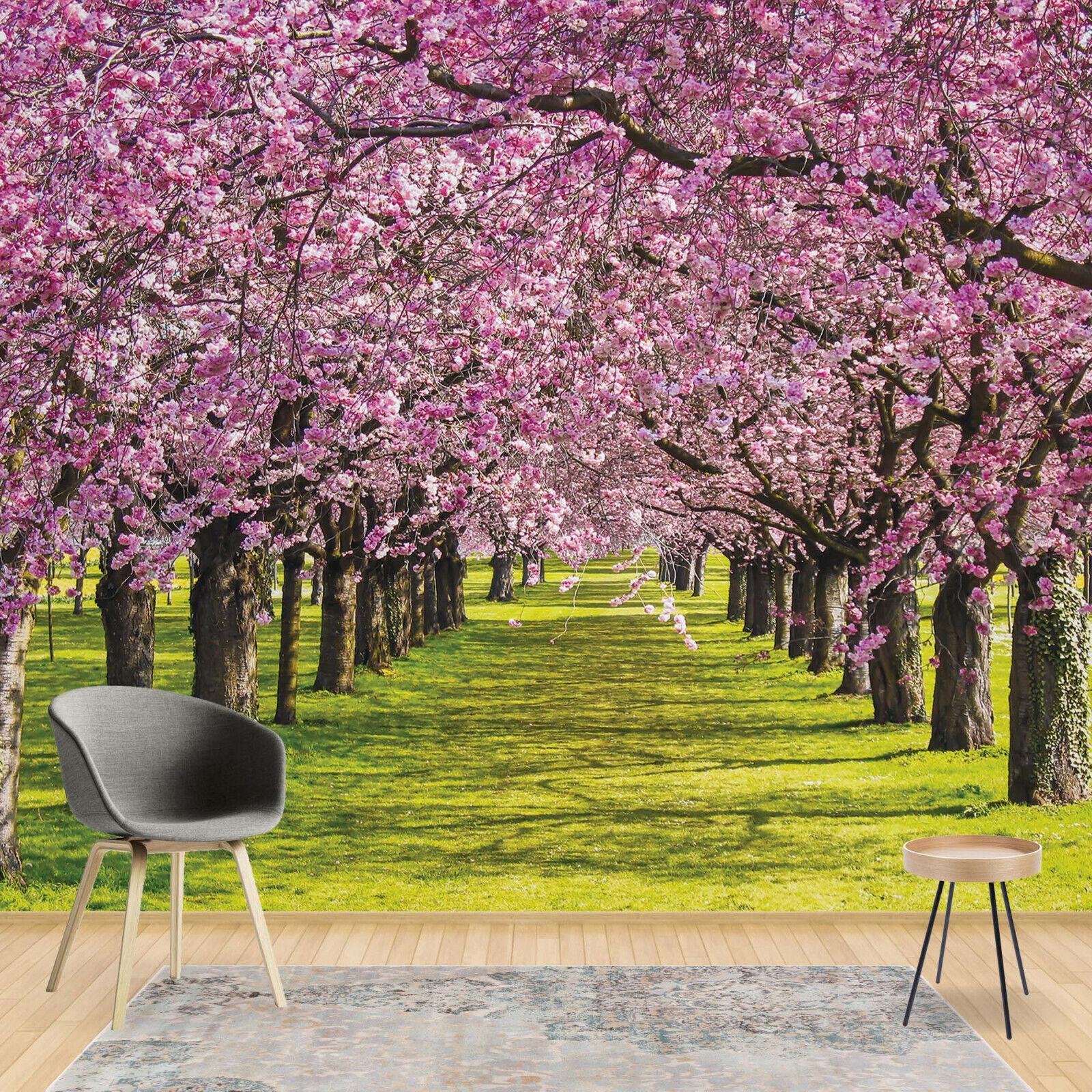 Tapete Vlies Fototapete Landschaft Pflanzen blühende Bäume Baumallee Frühling