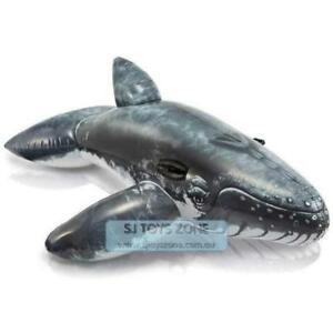 Intex-Inflatable-Ride-On-Realistic-Humpback-Whale-Lounge-Swimming-Fun-Kids-Toy