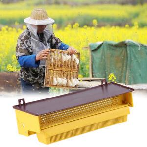 Removibile-Giallo-Apicoltura-Trappola-Per-Polline-con-Vassoio-Polline-Ventilato