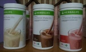 wholesale-protein-shake