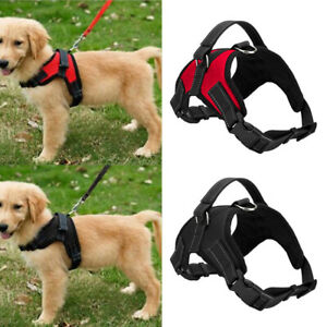 Pet-Control-Harness-Large-Dog-Cat-Soft-Black-Mesh-Walk-Collar-Safety-Strap-Vest