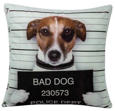 Bad Girl Posing Prisoner Dog Chenille Cotton 17 x 17 inch Cushion Cover Sofa Bed