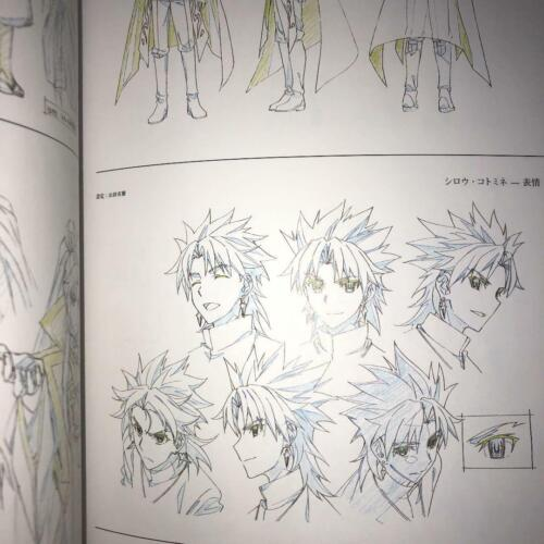 Art book Fate//Apocrypha Production Works Event Limited Book from Japan F//S used