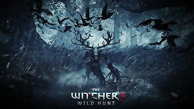 A4 A3 A2 A1 A0| The Witcher 3 Wild Hunt Game Poster Print T171