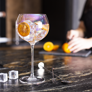 Iridescent Gin Glasses Set of 2 Cocktail Glasses Barware Sets M&W