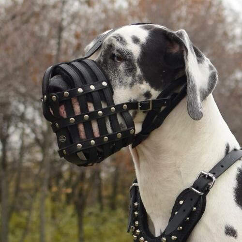 Great Dane Muzzles for Big DogsLarge Leather Dog Muzzle for Great Dane Size