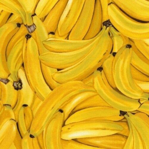 Timeless Treasures Farm Stand C8649 Yellow Bananas Cotton Fab
