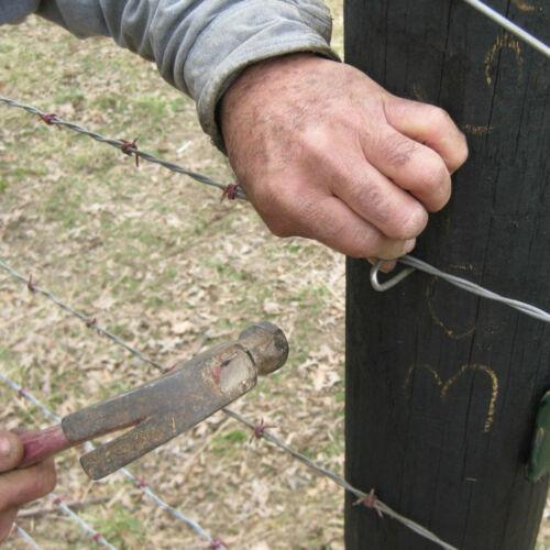 Galvanisé staples jardin filet escrime u ongles poulet treillis métallique 36 x 40mm