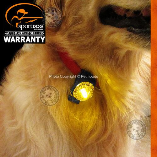 SportDOG Locator Dog Pet Collar Safety Beacon Blue Light Walking Hunting Hiking