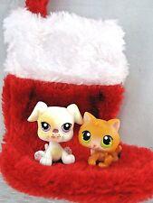 Littlest Pet Shop KITTEN CAT #86 BOXER PUPPY DOG #437 ~XMAS CHRISTMAS STOCKING!