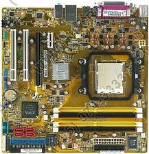 ASUS M2NBP-VM CSM WINDOWS 8 X64 TREIBER