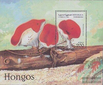 Sáhara Edición El Gobierno En El Exilio Sin Validez En Internacional El Tráfico Volume Large Stamps