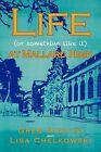 Life (or Something Like It) at Mallard High by Greg Martini, Lisa Chelkowski (Paperback / softback, 2012)