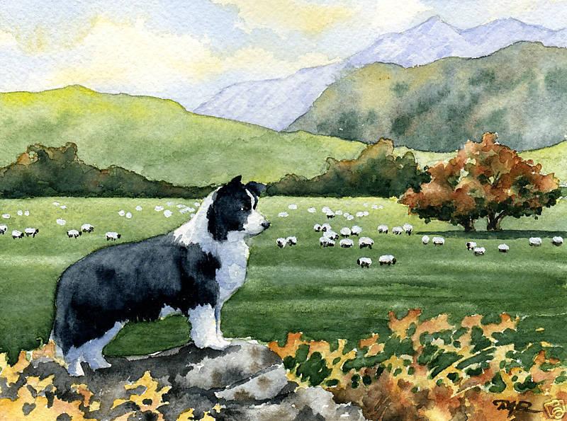 BORDER COLLIE  Dog WaterFarbe ART Print by Artist DJR