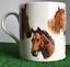 Famous-Racehorses-Red-Rum-Shergar-Nijinski-etc-china-mug-horse-lover-Gift-boxed miniatuur 4