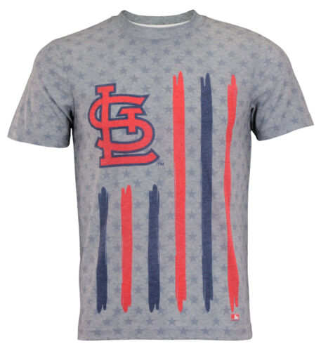 Louis Cardinals Big Logo Flag Tee Forever Collectibles MLB Men/'s st
