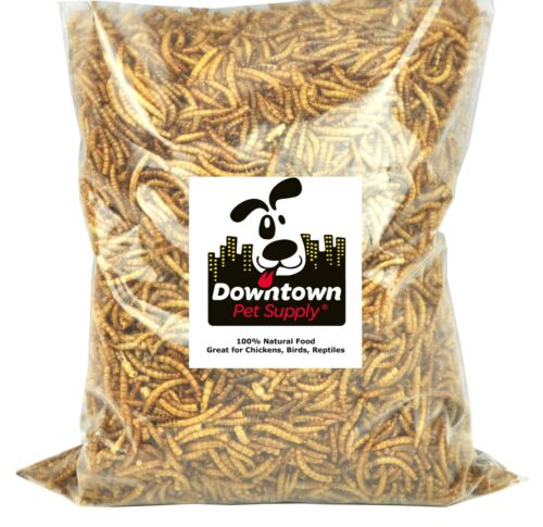 Downtown Pet Supply Dried Mealworms Natural Treats For Birds Chickens Reptiles