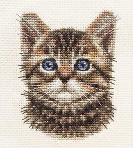 TABBY CAT, KITTEN, Detailed Face ~ Full counted cross stitch kit  *FIDO STUDIO