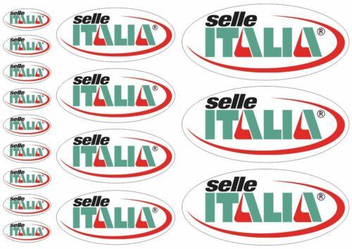 Selle Italia Decal Set Sticker Vinyl Graphic Logo Adhesive Kit Aufkleber 16 Pcs