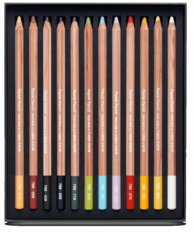 Caran Dache Extra Fine Dry Pastel Pencils Sketching Artist Colour Case Set Of 12