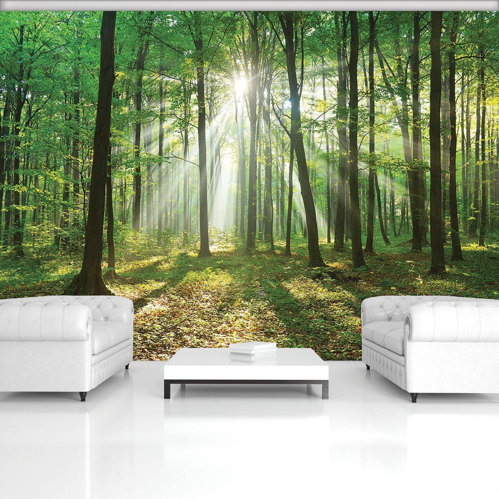 Vließ Fototapete Tapete Wandbild Wald Baum Sonne 310329_VEMVT