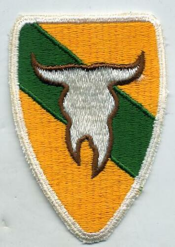 US Army 163rd Armored Cavalry Regt Color Patch
