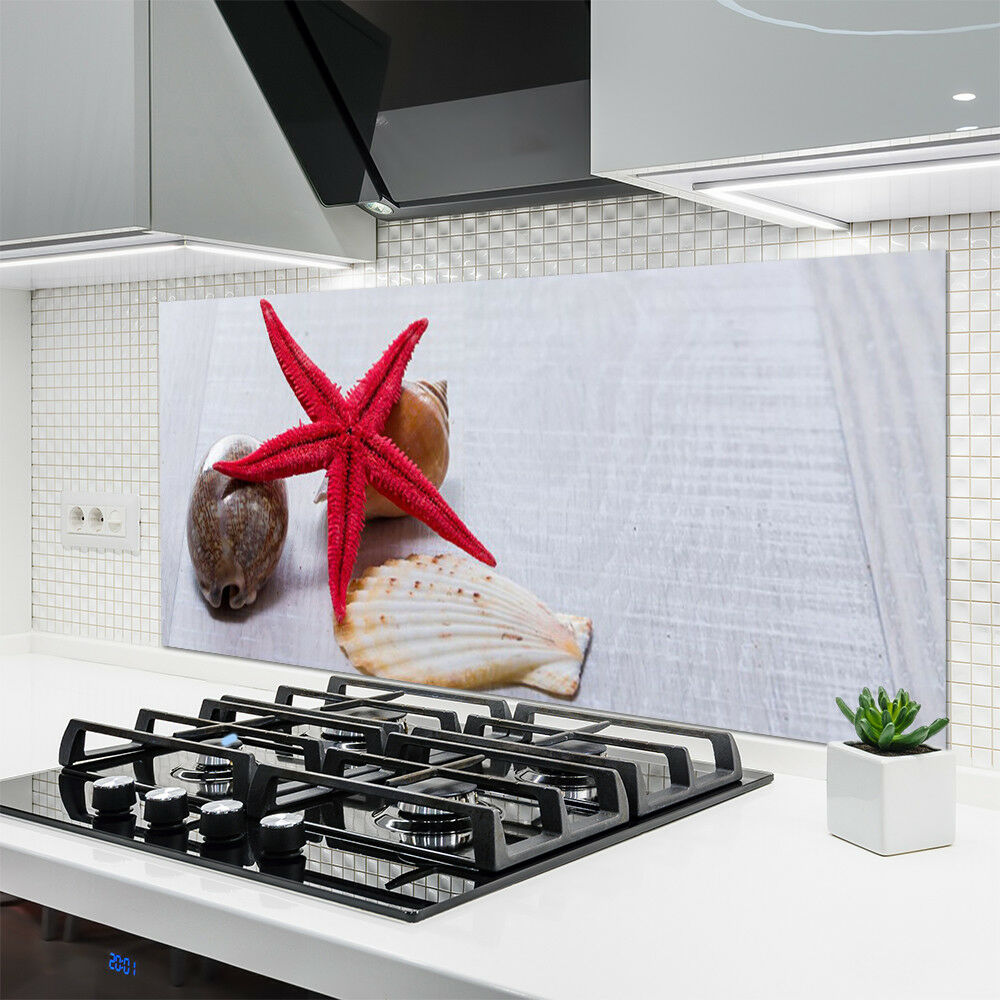 Cocina salpicaduras plano posterior de vidrio ESG protección contra salpicaduras Cocina 140x70cm estrella de mar arte Concha 2421c7