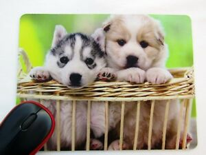 84f417ee1d26 Details about Animal Cute Puppies in Basket Print Mouse Mat, Mouse Pad For  Laptop or PC, New