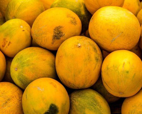 25 KOLKHOZNITSA MELON Collective Farm Woman Cucumis Melo Russian Fruit Seeds