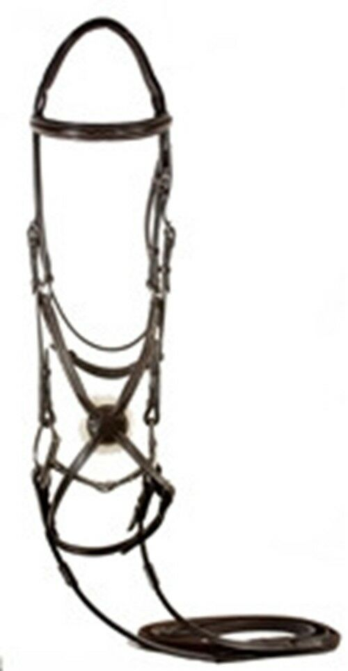 Nunn Finer Stefania Figure 8 Bridle