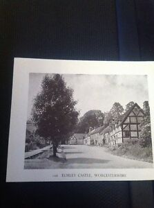 Ephemera-1949-Picture-Elmley-Castle-Worcester-f1k