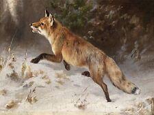 PAINTING EXTERIOR STUDY GRASHEY FOX WINTER FOREST ART PRINT POSTER LF453